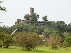 Streuobstwiesen vor Altenburg