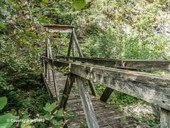 DUN190 Mu00fchle Pedestrian Bridge over the Du00fcnnern River, Welschenrohr-Gu00e4nsbrunnen, Canton of Solothurn, Switzerland