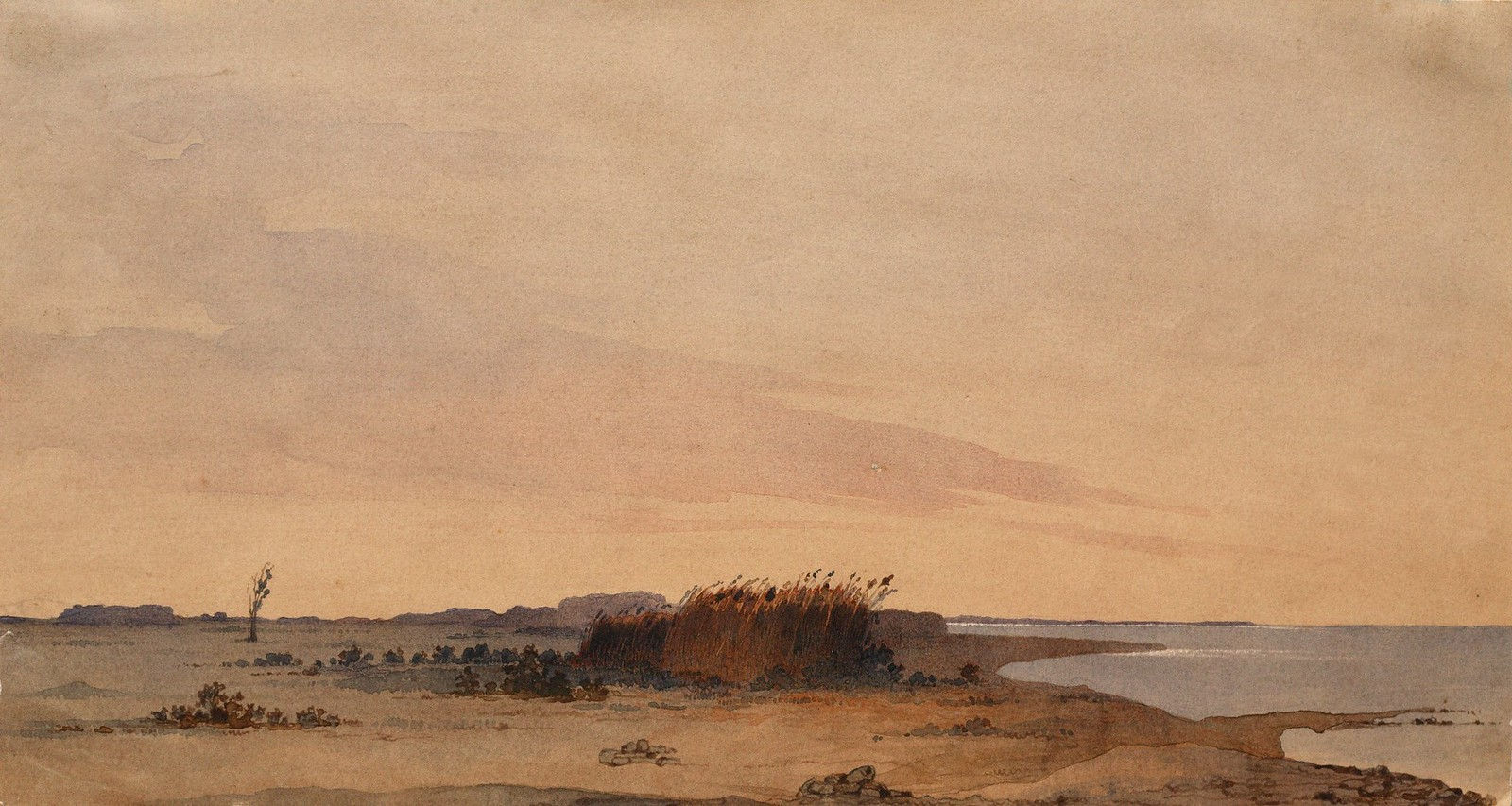 1848. Очерет на берегу моря