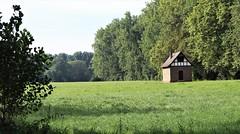 Hammer-Aue, Hessen - Gebietsbild, 210922