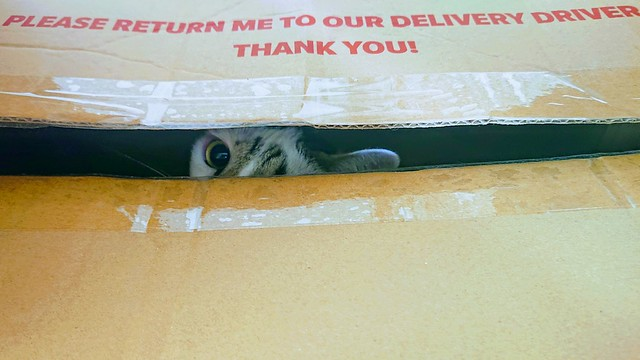 267: return to sender