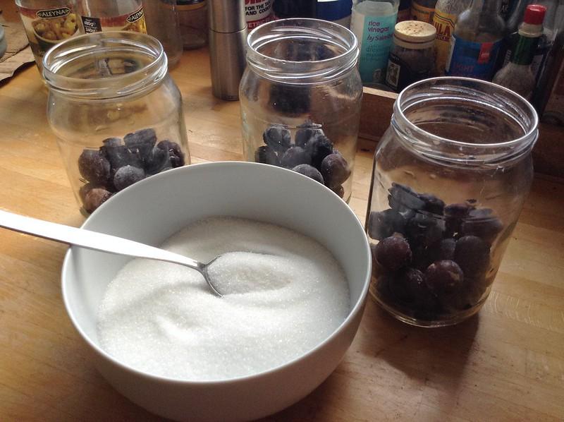 Apple Chutney, Damson Chutney & Damson Gin: Allotment Garden Damson Gin - step 1