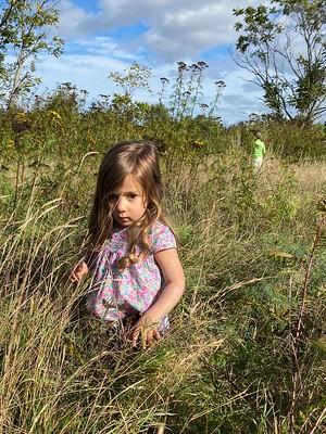 walking through the tall grass
