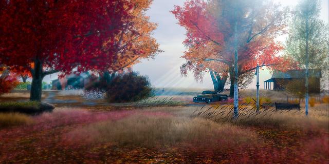 Elvion Autumn
