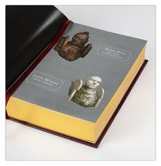 Крис Райт «ЕРЕСЬ ХОРУСА. ОСАДА ТЕРРЫ: БОЕВОЙ ЯСТРЕБ», ограниченное издание | Horus Heresy: Siege of Terra. WARHAWK, Limited Edition