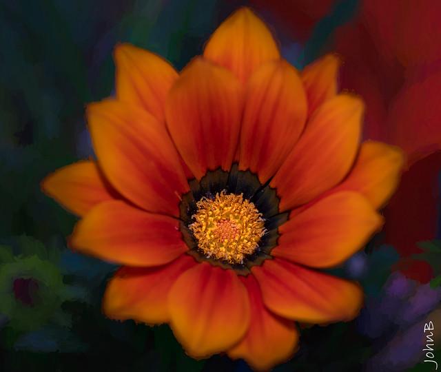 Flores de Santa Gemita - 092121 - TS2