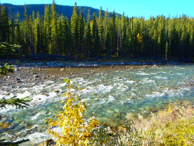 Autumn Wilderness