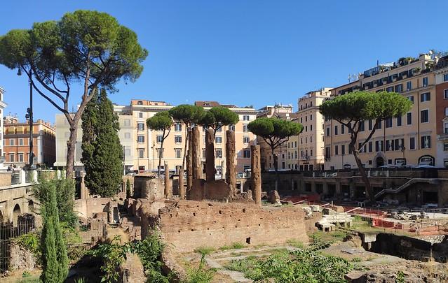 Torre Argentina / Rome