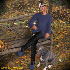 Fall Blue