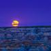 Harvest Moonrise at Dinosaur Park