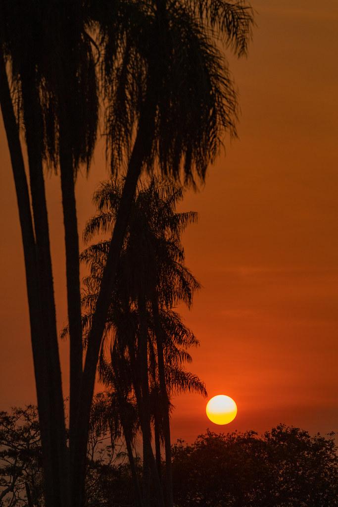 Nascendo o sol no Pantanal