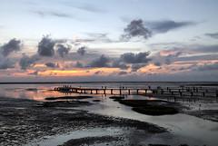 Sunset at wetlands/香山濕地