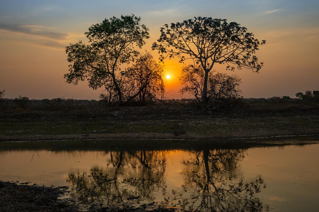 Pôr do sol no Pantanal
