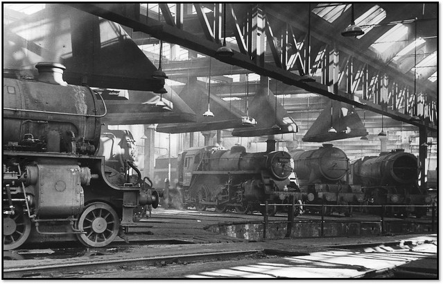 Variety of Motive Power at York Shed