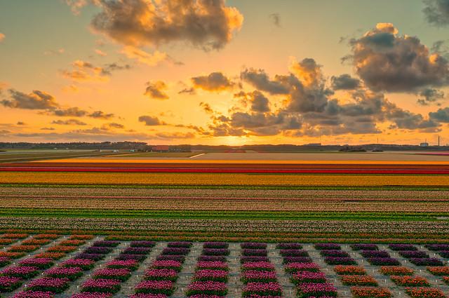 Sunset near Petten, Holland.