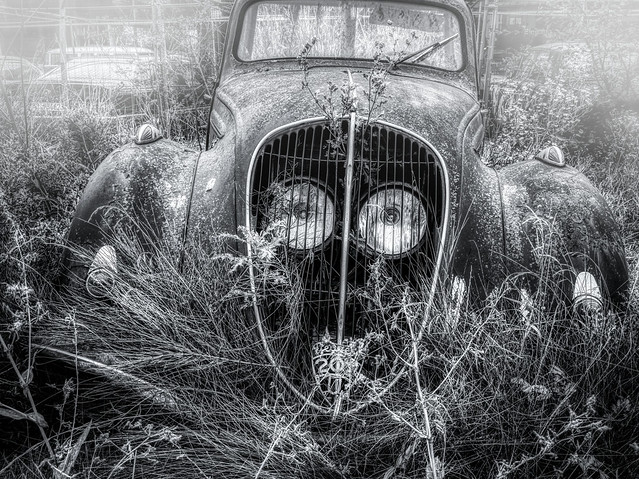 A RUSTY PEUGEOT IN THE FOG