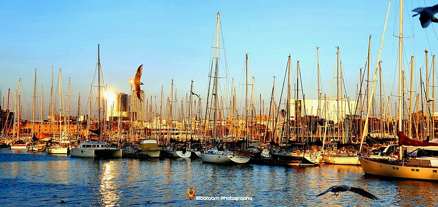 Sailing to Paradise (In EXPLORE)