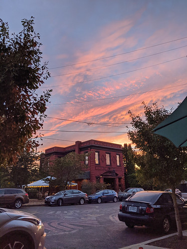 sunset in Woodlawn