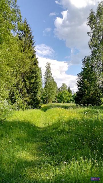 Pavlovsk Park Saint Petersburg RF (c) Bernard Egger :: rumoto images 2541