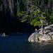 Dream Lake  - Rocky Mountain National Park, CO