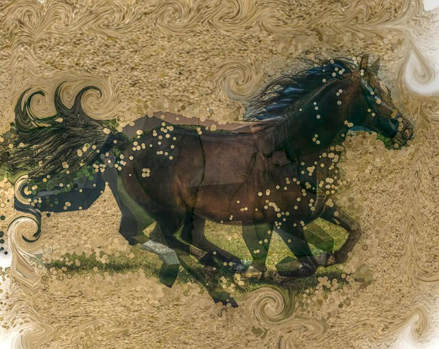 The hooves of the horse! Oh! witching and sweet is the music earth steals from the iron-shod feet; no whisper of love, no trilling of bird, can stir me as hooves on the horse have stirred. - Author: William Henry Ogilvie