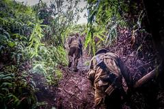 "SEP 2021 - Jungle ""Green Mile"" - Class #11-21"