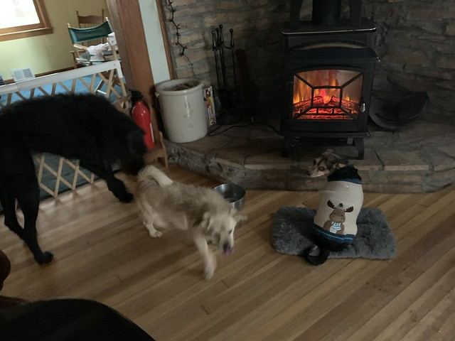 Sitting in Front of the Wood Stove