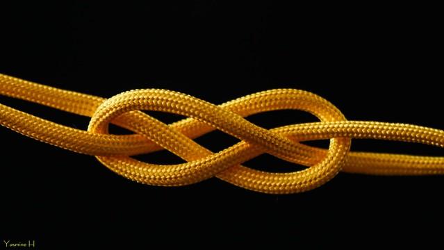10194 - #Knots #MacroMondays