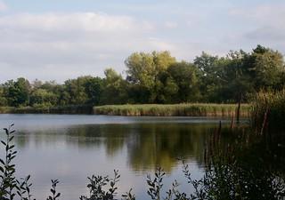 Landscape - Little Pond, Frensham.