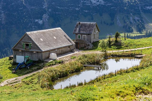 Autumn on Alp Sigel