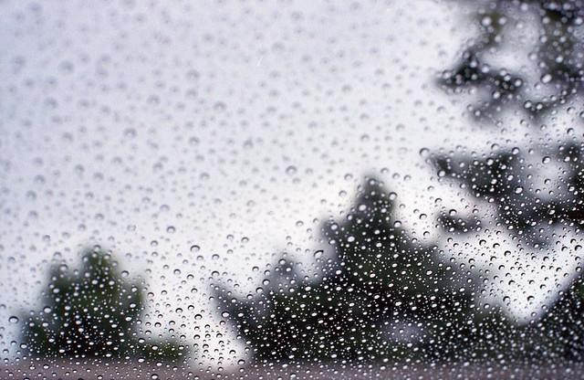 Rain Delay
