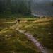 tricouni-east-hike-190921-ajbarlas-4456.jpg