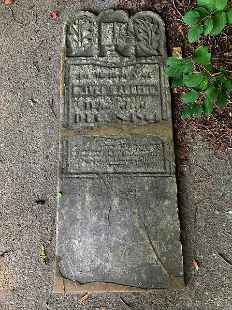 Cemetery with single grave in Green wood conservation area , Martins photograph , Ajax , Ontario , Canada , September 20. 2021