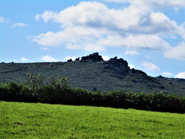 Great Hound Tor from Beckaford Farm