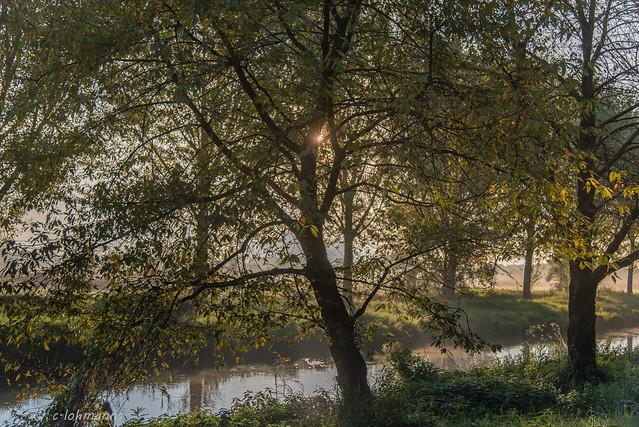 die Morgensonne ............