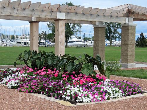 park display 5