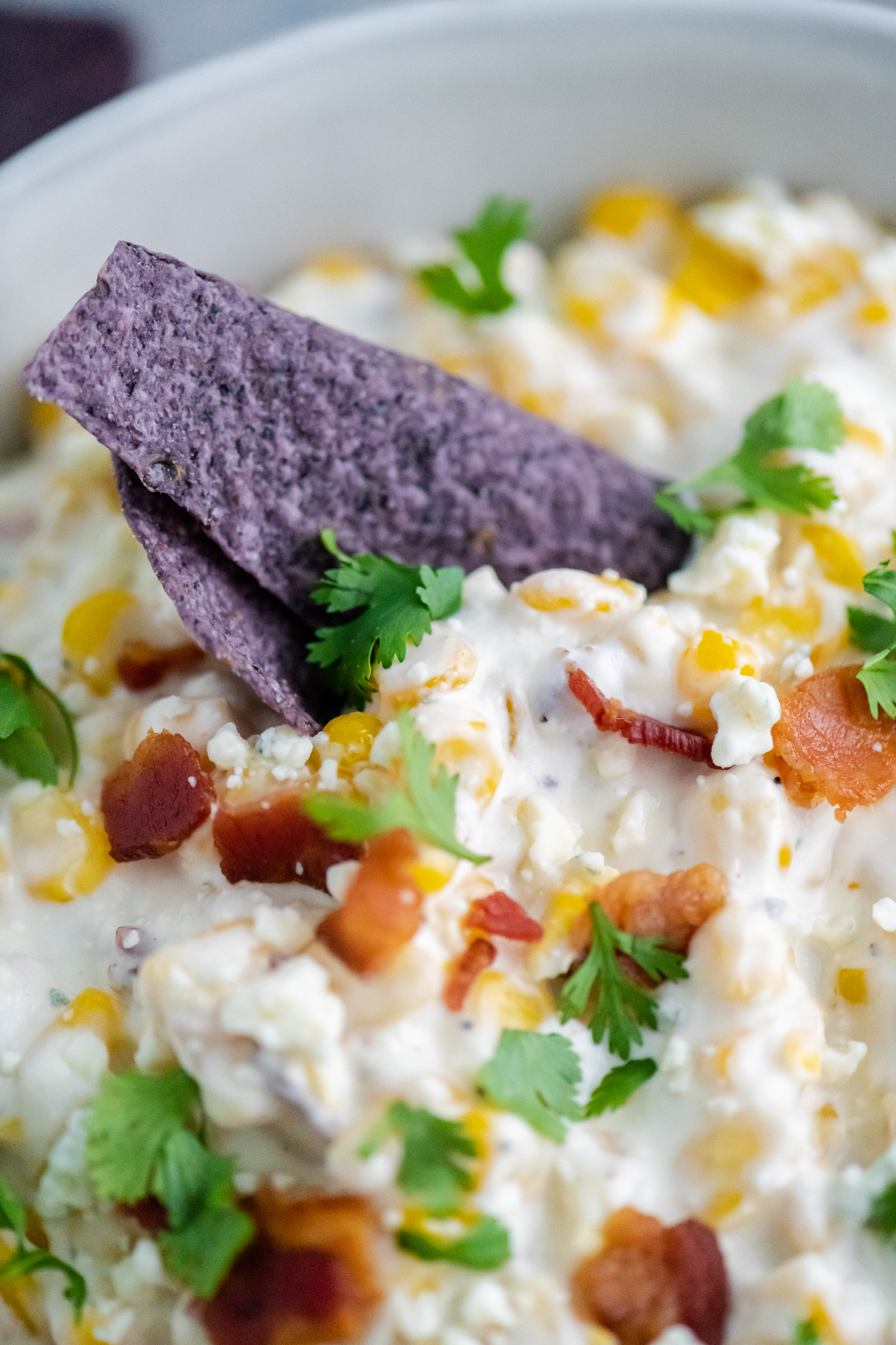 Close up of blue corn tortilla chip dipped into hot corn dip with bacon.