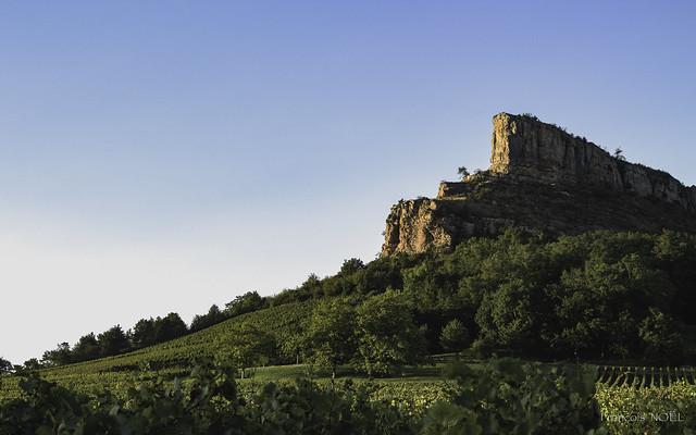 Le château des vignes