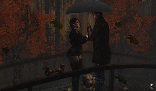 Autumn Rain In The Park