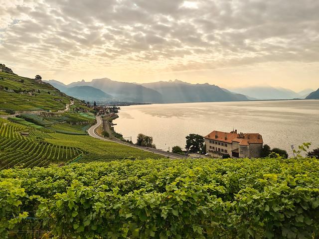 UNESCO-listed Lavaux vineyard terraces  Lake Geneva
