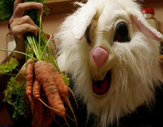 269 - 365 carrots