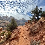 26. September 2021 - 10:53 - Cassidy Arch trail, Capitol Reef NP