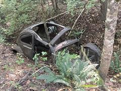 VW Hulk