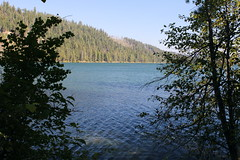 Suttle Lake, seen through an opening in the vegetation