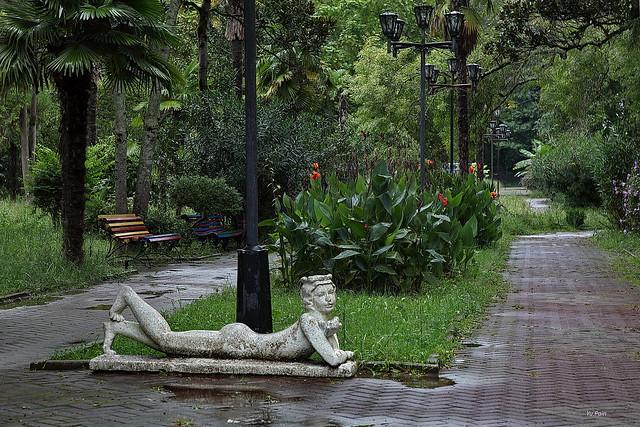 A rainy day in the old psrk. Addler.Дождливый день в старом парке. Адлер.