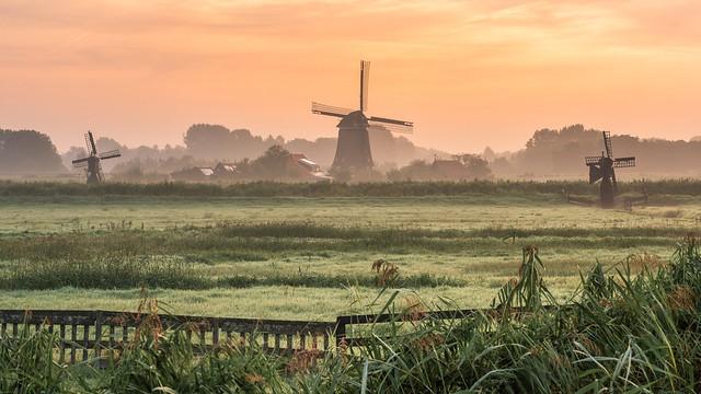 Triple Dutch   Holland