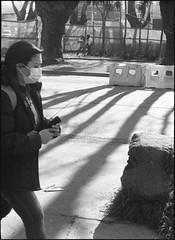 Pandemia y sombras