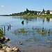 La Pointe (confluence de la Maine et de la Loire)