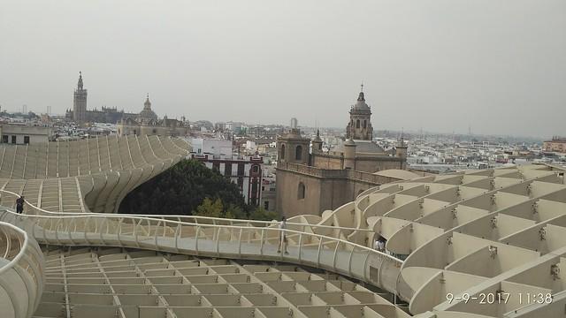 setas de sevilla, vistas desde el metropol