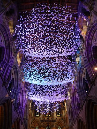 Angel Wings - Hexham Abbey